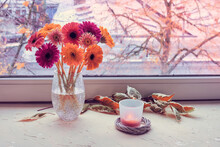 Autumn Window, Gerbera Flowers, Candle. Pink, Magenta, Coral And Yellow Gerbera Flowers On A Window Board. Green White Leaves. Grey Cold Weather Outside, Orange Sunset. Stay Warm And Cozy Indoors.