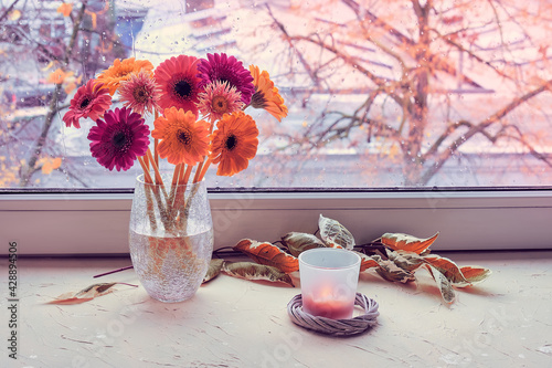 Obraz na plátně Autumn window, gerbera flowers, candle