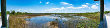 Panorama Of Wetlands Area And Boardwalk At Chapel Trail Nature Preserve - Pembroke Pines, Florida, USA