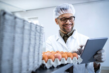 Food Factory Technologist In White Coat Hairnet And Hygienic Gloves Controlling Eggs Production At The Food Processing Plant On Tablet Computer.