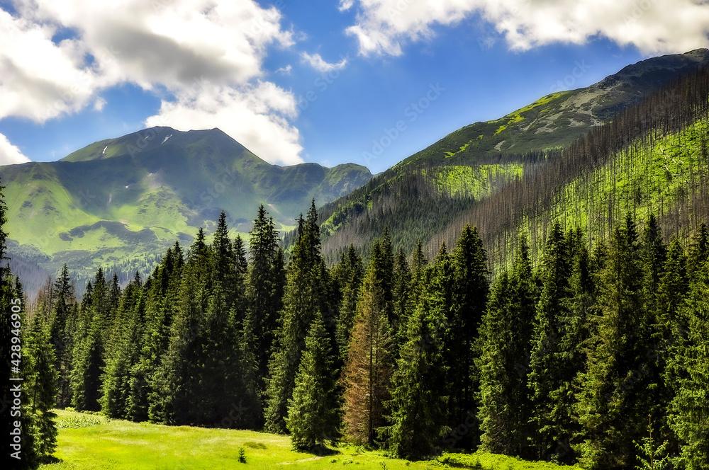 Fototapeta krajobraz  górski
