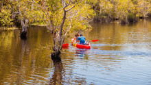 Kayaks Couple On The River. Back View