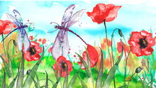 Watercolor Landscape With The Image Of Wild Grasses, Flowers, Green Plants, Red Poppy, Fields. Against The Background Of The Blue Sky. A Dragonfly Flies, A Moth Above The Wildflowers.Pollen.