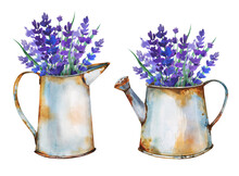 Beautiful Herbal Bouquets In Old Rusty Metal Vintage Vases In The Garden Hand Drawn In Watercolor.