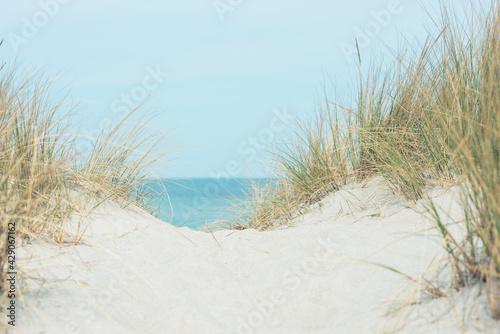 Fotografering Baltic sea dunes over blue coastline background