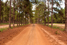 Estrada De Terra Romantica