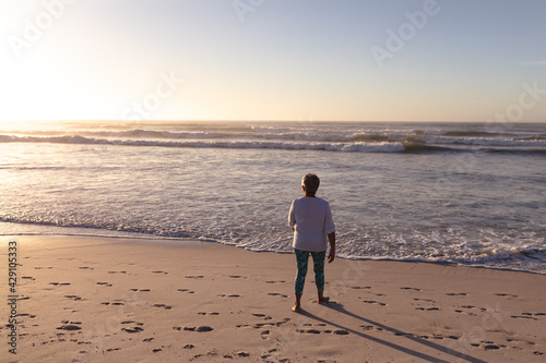 Rear view of senior african american woman walking on the beach