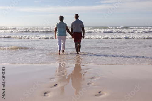 Rear view of senior african american couple holding hands while walking on the beach