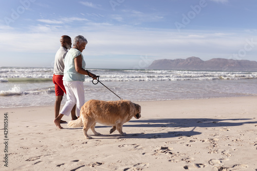 Senior african american couple walking a dog at the beach