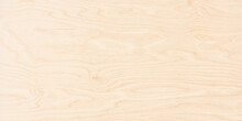 Wood Texture, Vintage Boards Background. Light Plywood