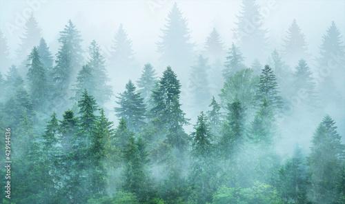 Wallpaper, mural, fresco. Forest in the fog.