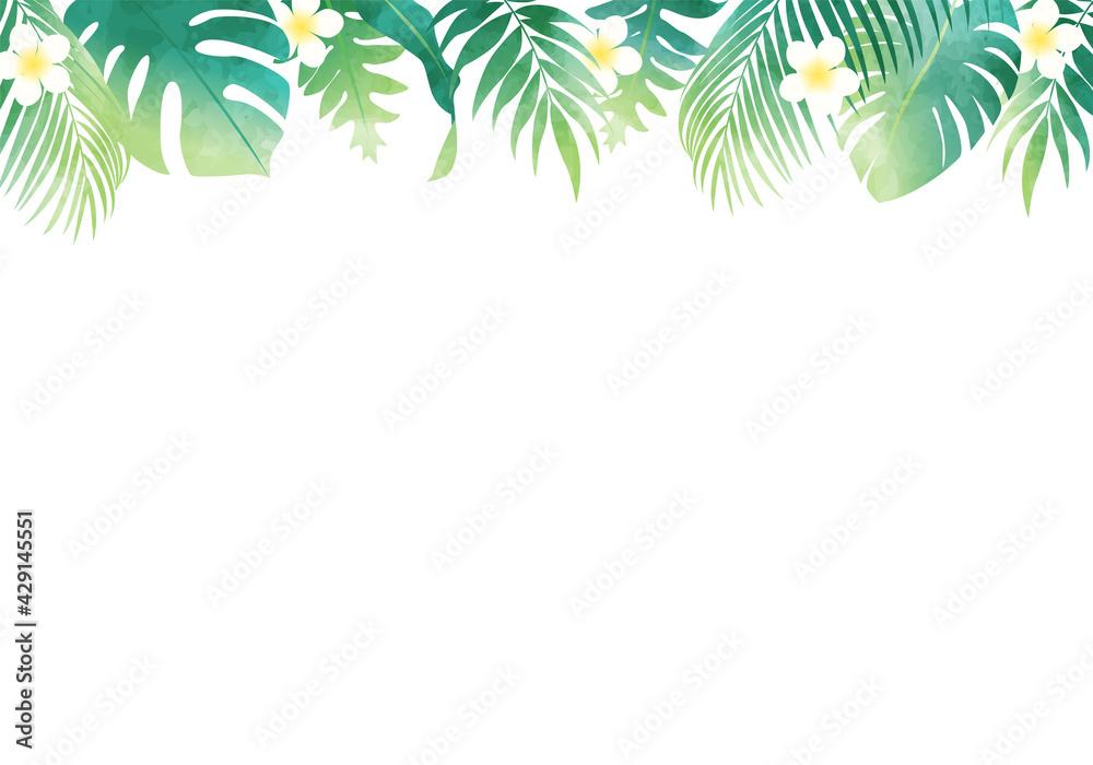 Fototapeta 夏の植物の葉っぱ数種類のベクターイラストフレーム背景