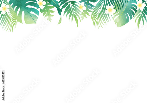 Obraz na plátně 夏の植物の葉っぱ数種類のベクターイラストフレーム背景