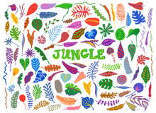 Colorful Cartoon Tropical Rainforest Foliage Leaves Plants Set