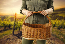 Woman Hands With Wooden Basket Of Free Space For Your Decoration