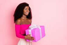 Profile Photo Of Optimistic Brunette Nice Lady Hold Present Wear Pink Top Skirt Isolated On Pastel Color Background