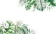 Watercolor tropical leaves border illustration