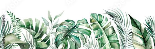 Watercolor tropical leaves seamles border - fototapety na wymiar