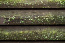 Old Wooden Fence Made Of Horizontal Boards, Covered With Green Moss