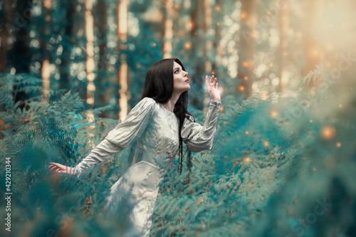 Naklejka premium Wróżka w zaczarowanym lesie