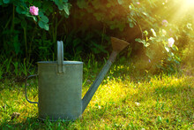 Vintage Metal Watering Can Stands On The Green Grass In The Garden