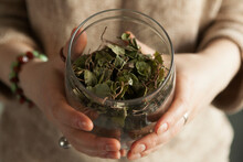 Dried Fragrant Herbs In A Glass Jar, Female Hands Hold A Jar Of Herbs, Medicinal Herbal Collection.