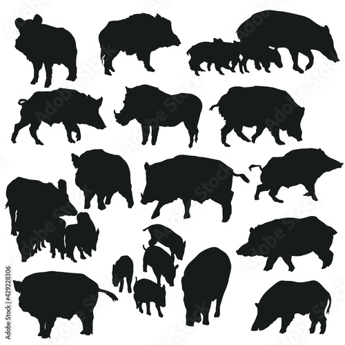 Wild Pig Illustration Clip Art Design Collection Silhouettes Animal Vector clipart Fototapete