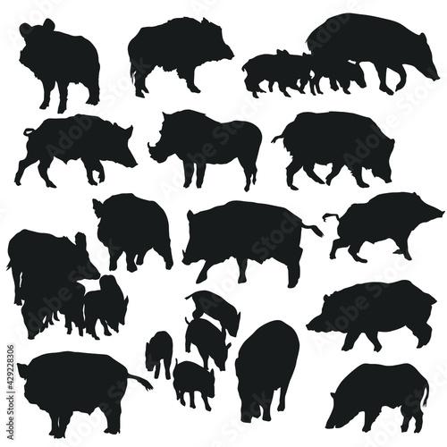 Fotografie, Obraz Wild Pig Illustration Clip Art Design Collection Silhouettes Animal Vector clipart