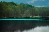 Lisowice Łódzkie Polska jezioro krajobraz