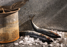 Whole Mackerel With Metal Strainer And On Ice