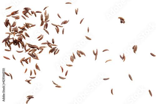 Obraz na plátně Caraway seeds isolated on a white background.
