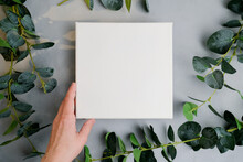 Female Hand With White Canvas Frame, Green Plant Branches On Background. Wrapped Blank Canvas For Mockup Poster. Spring, Summer Concept. Copy Space. Top View.