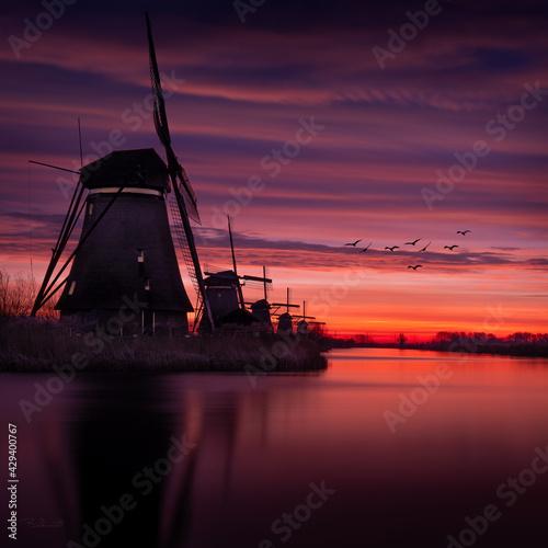 Obraz Kinderdijk Nederland holland  - fototapety do salonu