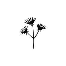 Vector Illustration Of A Simple Flower Hand Drawn In Ink. Isolated Botanical Element Black On A White Background. Wild Forest Plant. Design For Label, Logo, Template, Print, Card, Icons.