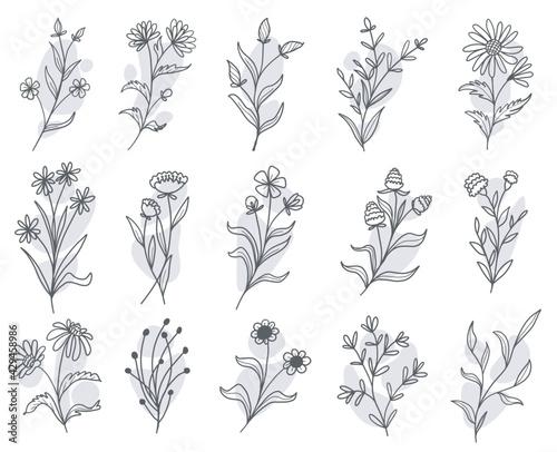 Photo set of botanical floral doodle wildflower line art