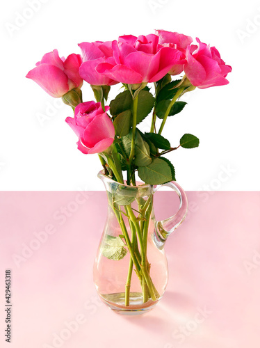 pretty pink rose isolated close up Fototapete