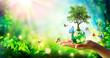 Leinwandbild Motiv Environment - Tree Growth On Planet In Green Forest With Butterflies