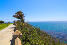 A Long Smooth Footpath At The Park Along The Hillside Near The Ocean With Lush Green Palm Trees Blue Ocean Water And Blue Sky At Point Fermin Park San Pedro California
