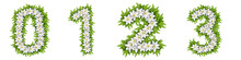Numbers 0, 1, 2, 3 Made Of White Flowers With Leaves, Snowdrop