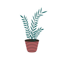 Home Plant In Flowerpot Isolated On White Background In Flat Style. Decorative Element At Home. Vector Illustration.