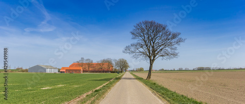 Photo Panorama of a lone tree and road in the flat landscape of Groningen