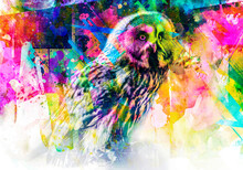Owl With Creative Abstract Elements On Colorful Background