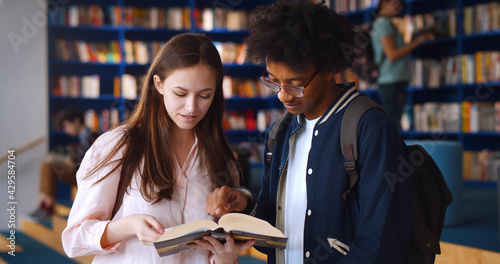Multiethnic college students studying in together school library. Wallpaper Mural