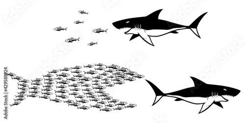 Obraz na plátně Big Fish Small Fish