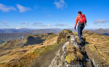 A Hiker Walking Over The Mountain Summit Ridge Of Meall Garbh Towards The Top Of Beinn Nan Eachan In The Scottish Highlands, UK Landscapes.