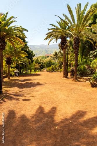 Fotografie, Obraz Parque Taoro en el municipio de Puerto de la Cruz