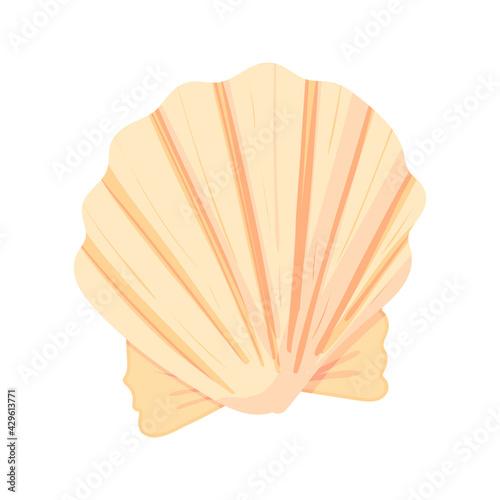Fototapeta Conch flat cartoon vector Illustration isolated on white background