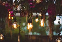 Lamp, Decorative Light, Incandescent Lamp