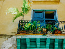 Balcony With Palm Leaves In Havana
