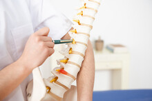 Closeup View Of A Physiotherapist Showing The Dorsal Spine And Backbones Operation.
